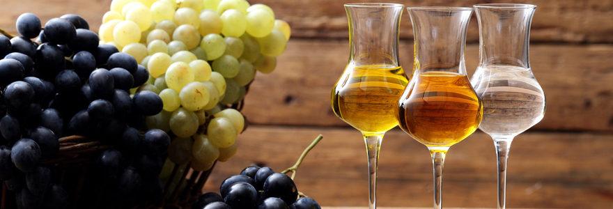 vins biologiques